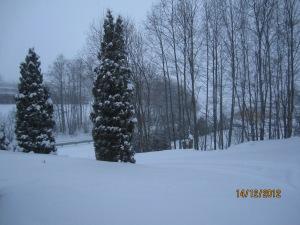 tuyết rơi.