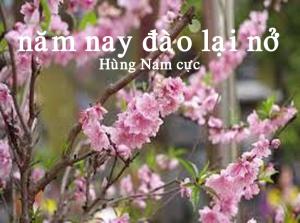 NamNayDaoLaiNo
