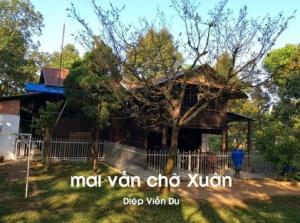 maivanchoxuanBR