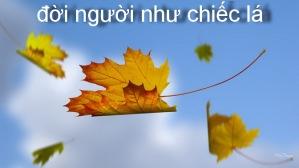 chieclamuathu_02rb