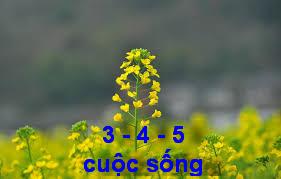 chuyensuyngam_02b