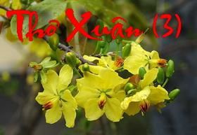thoxuan_dacsan_03rb