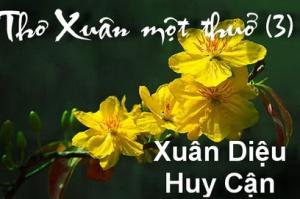thoxuanxua_03rt